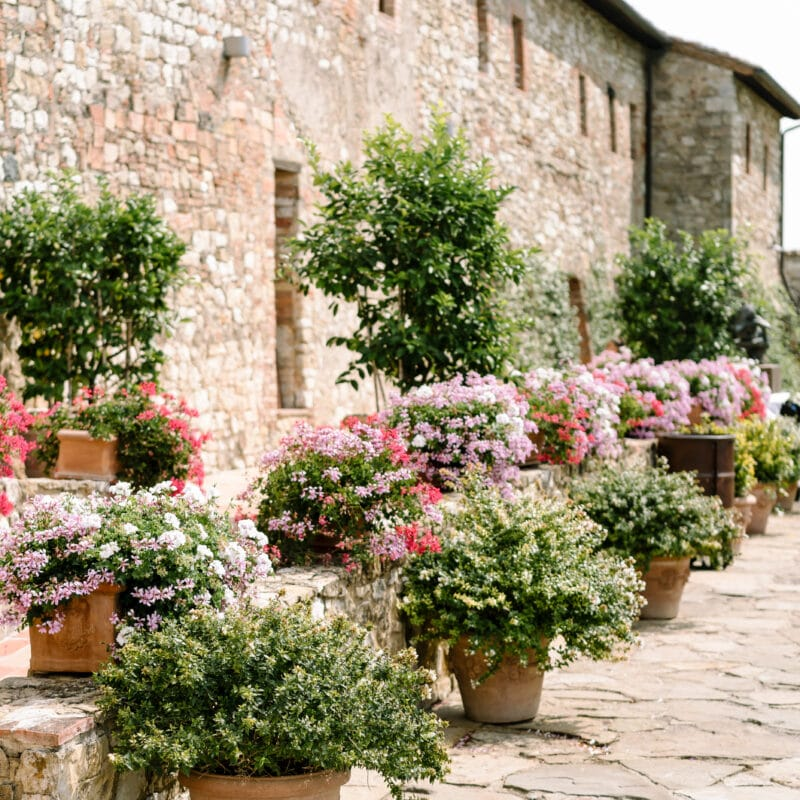 Colored geranium flowers in the garden of this exclusive resort in Tuscany