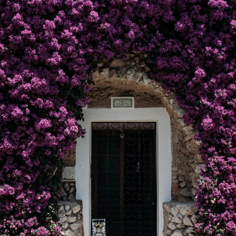 Bouganville decor for weddings in Capri