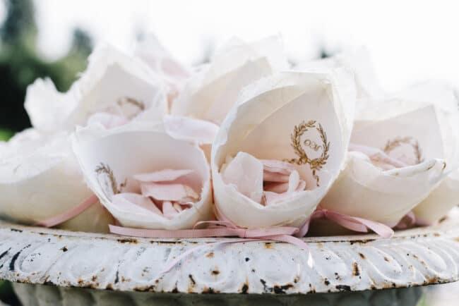 Elegant cones with petals