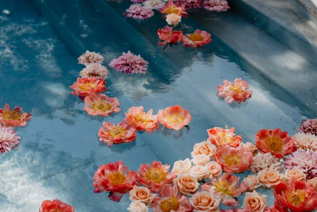 Colored floating petal to decor the pool