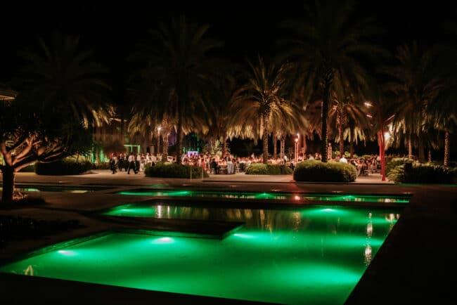 Palms garden for a luxury wedding in Sicily