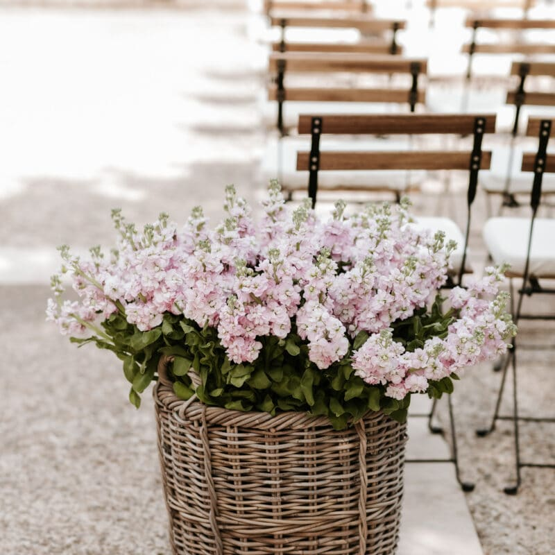 Pink ceremony flowers for a wedding in Sicily