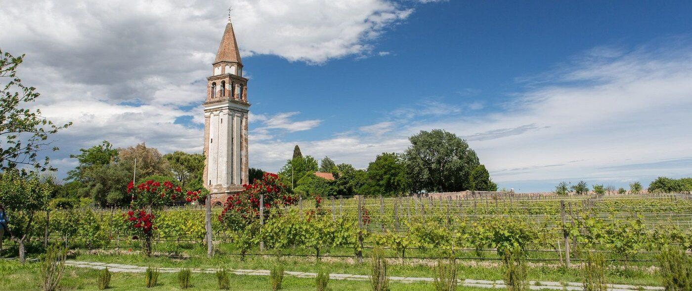 Wine resort for vineyards view weddings in Venice