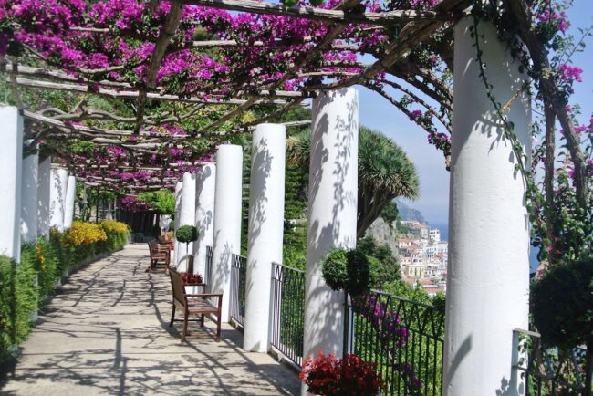 Pergola with bougainville with sea-view