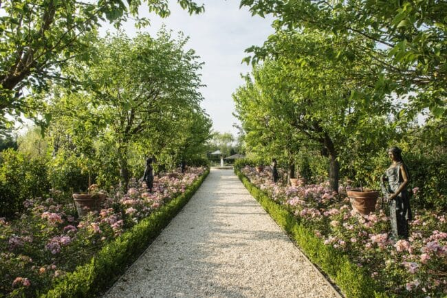 Garden boulevard with pink blooming flowers